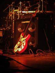 Gitarre passend zum Look